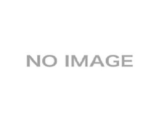 皇帝競馬エンペラーの画像